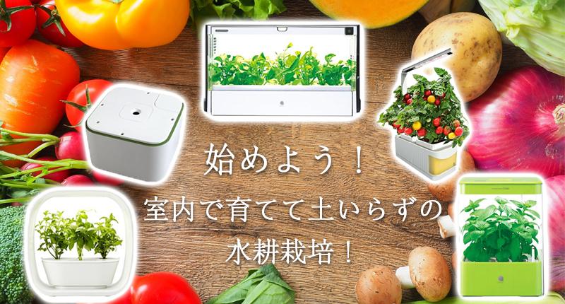 自宅で簡単に野菜を育てれるおすすめの水耕栽培機5選【土いらずで簡単】